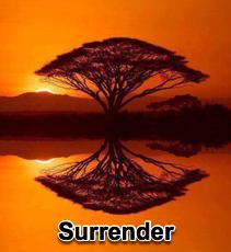 Surrender - 5/20/11