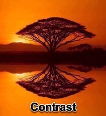 Contrast - 3/20/11