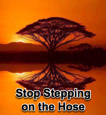 Stop Stepping on the Hose - 5/19/10