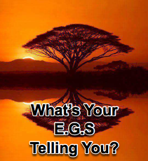 What's Your E.G.S. Telling You? - 7/16/08