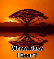 Where Have I Been? - 4/16/08