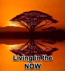 Living in the NOW - 11/21/07