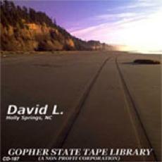 The David L. Story