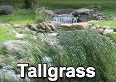 Tallgrass Big Book Study - 2017