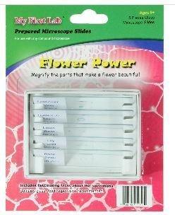 Flower Power 5pc Slide Set, Priced Per Set