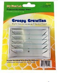Creepy Crawlies 5pc Slide Set, Priced Per Set