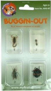 Buggin-Out, Bug Set, 4 Piece Cardered, Price Per Card