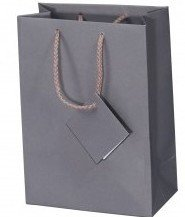 Paper Gift Bags with Gift Tag, Solid Color, 4 3/4