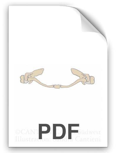 PDF: Schlüsselbeine