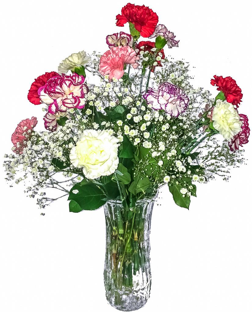 Valentines Carnation Bouquet