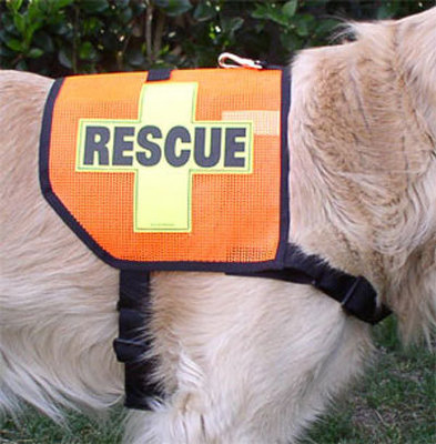 Mini K-9 Vest (Mesh): RESCUE Cross