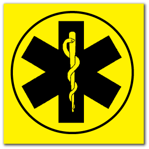 Reflective Patch: Star of Life