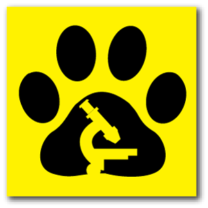 Reflective Patch: Paw Scope