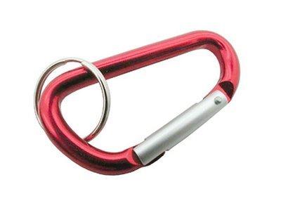 Keychain: Carabiner