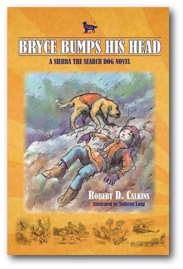 Bryce Bumps His Head (Book 4)