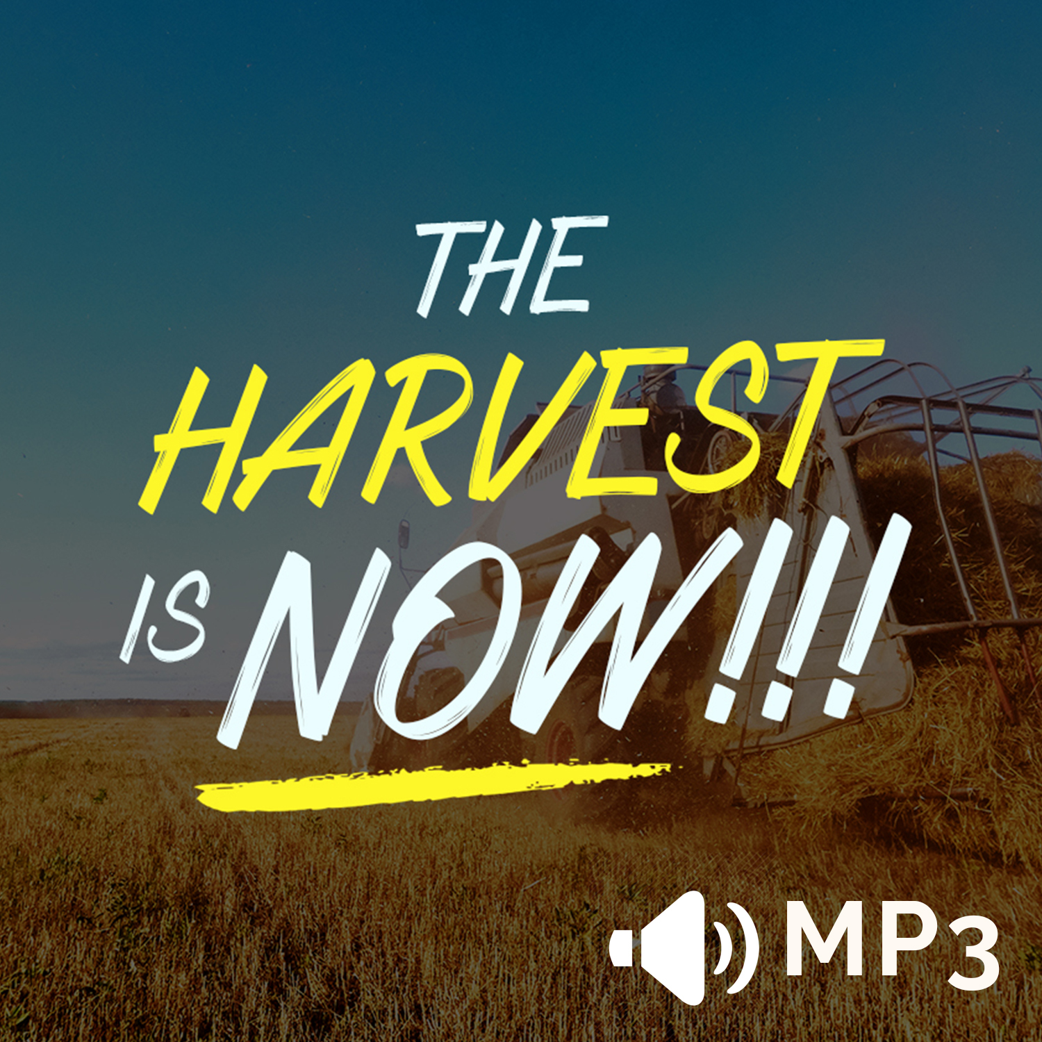 The Harvest is NOW!!! 00019