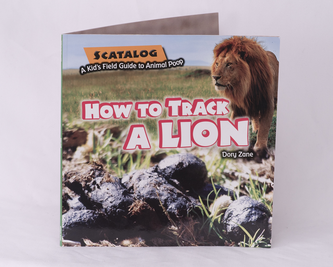 How to Track a Lion 00021