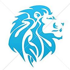 Lion Head Design Heat Transfer Vinyl ready to put on T-Shirt many colors