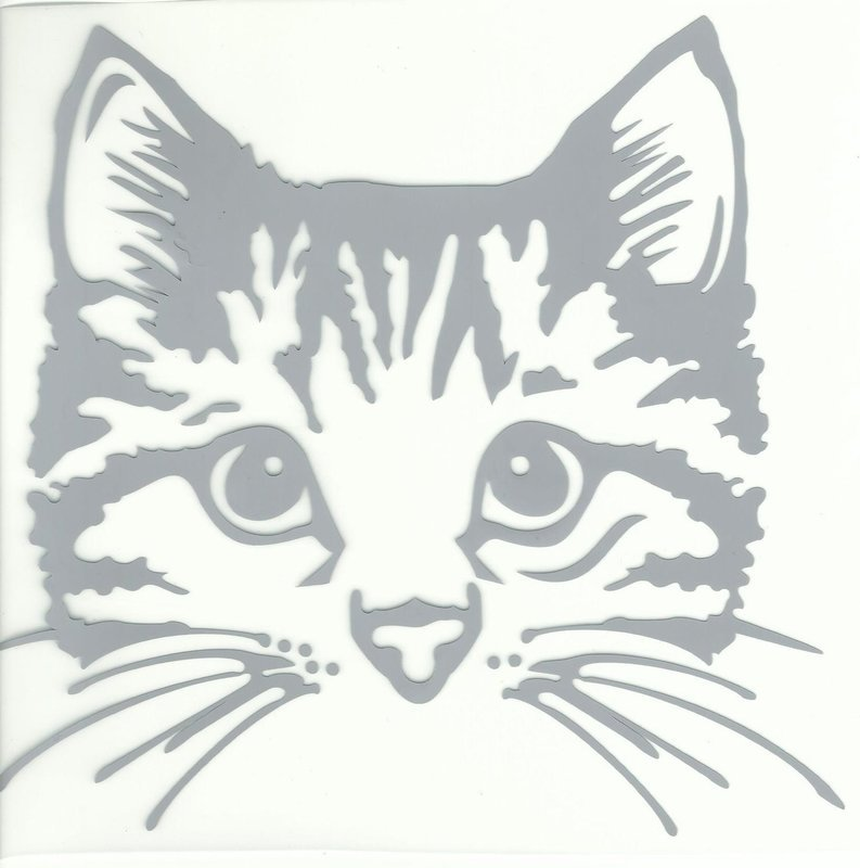 Cat Design Heat Transfer Vinyl ready to put on T-Shirt Grey color and we can custom many colors as you like
