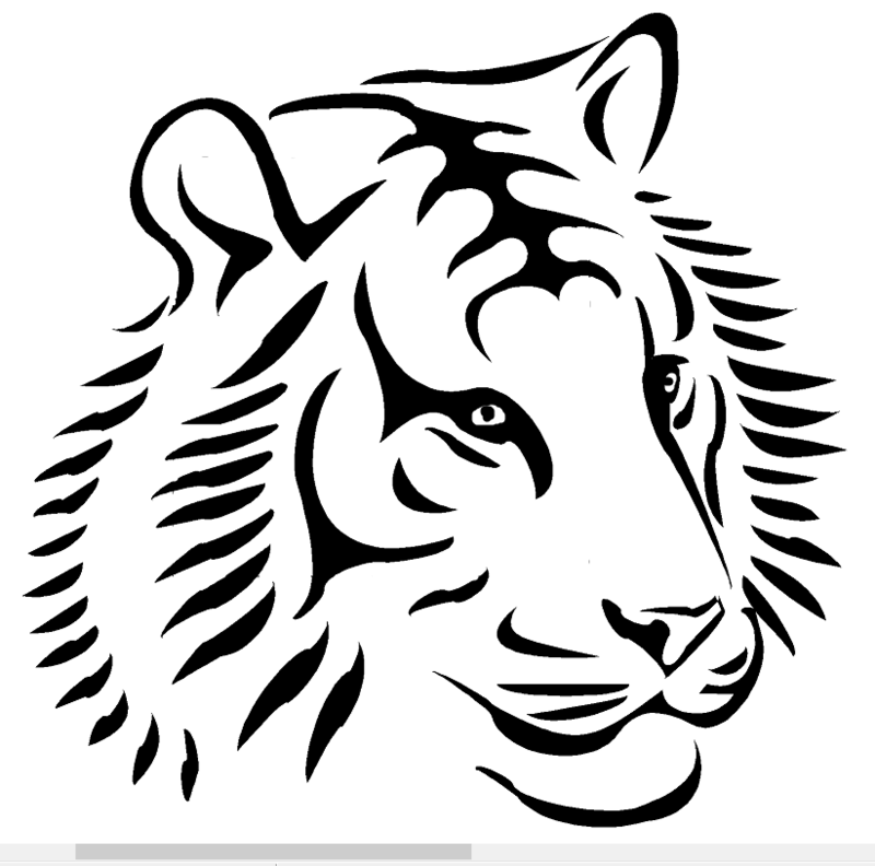Tiger Design Heat Transfer Vinyl ready to put on T-Shirt many colors