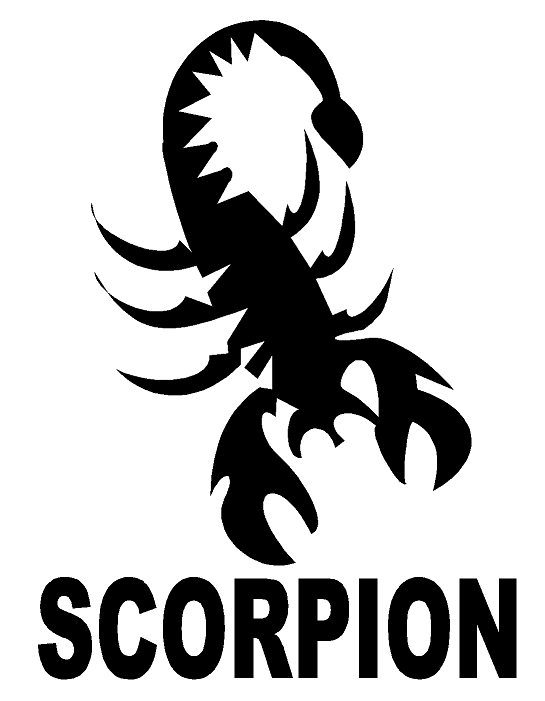 Scorpion Design Heat Transfer Vinyl ready to put on T-Shirt many colors