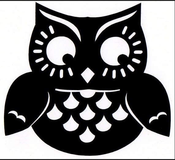 owl Design Heat Transfer Vinyl ready to put on T-Shirt many colors