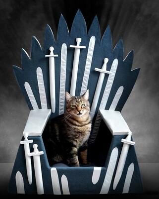 Cama Para Mascotas Juego de Tronos