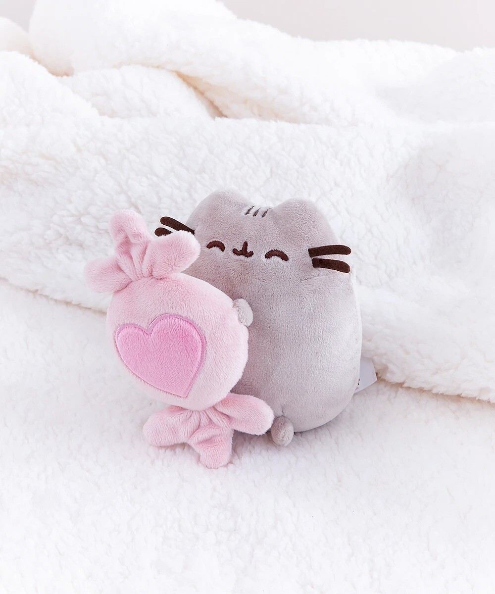 Peluche Pusheen 14 de Feb Corazon