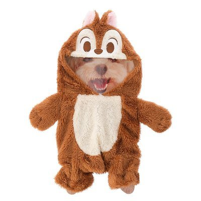 Cosplay Perrito Chip y Dale