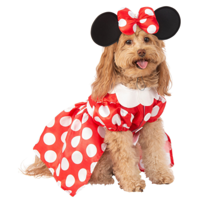 Cosplay Perrito Minnie Mouse