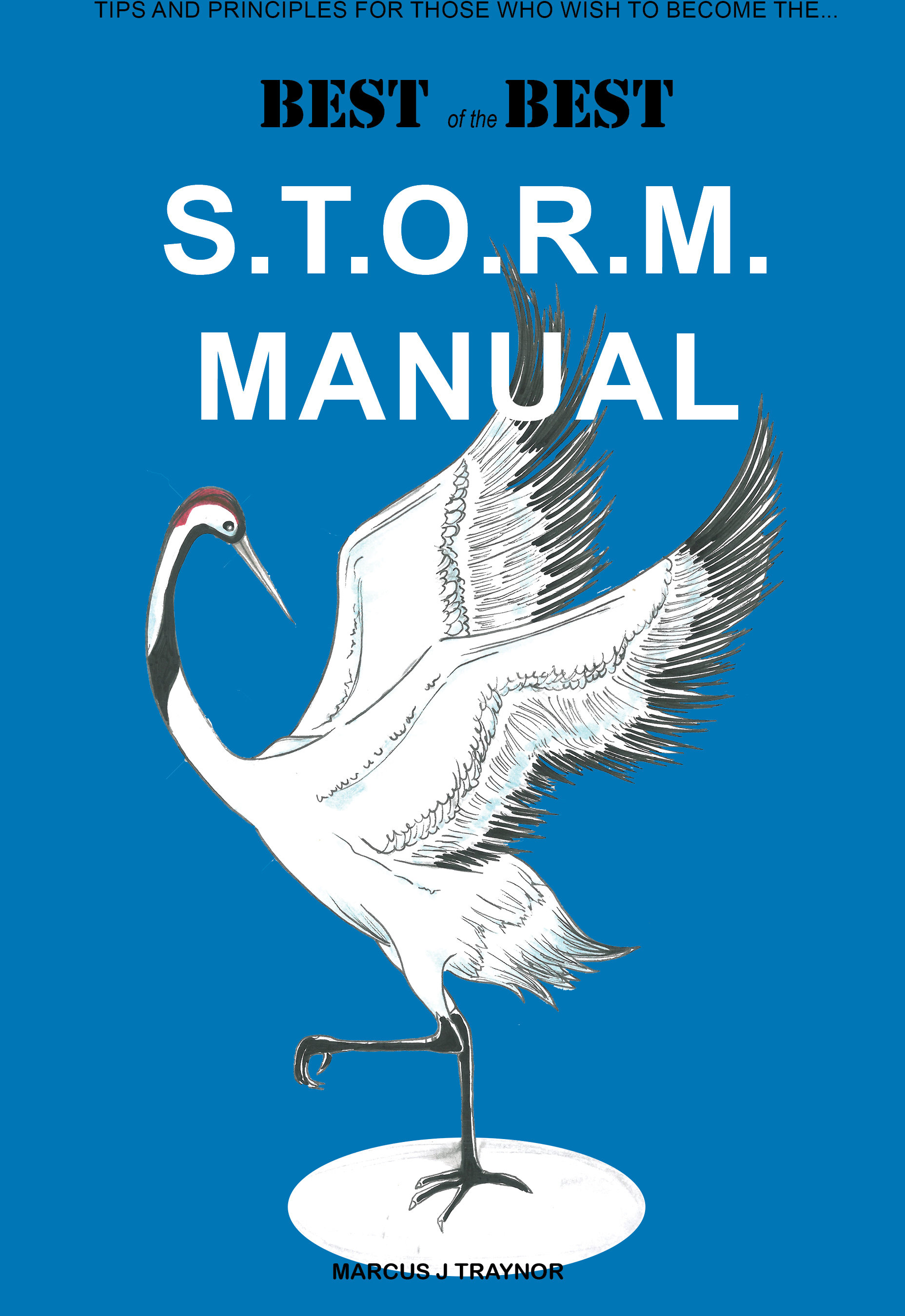 S.T.O.R.M. Manual 00038
