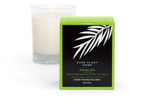 Front Italian Bergamot/Persian Lime Coconut Wax