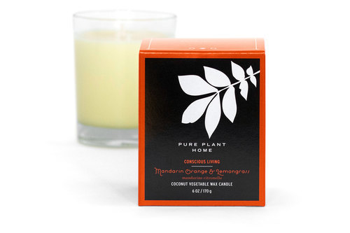 Front Mandarin Orange/Lemongrass Coconut Wax