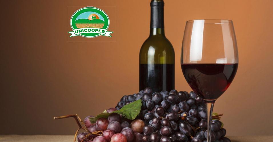 Vinho Bordô Orgânico - 750ml