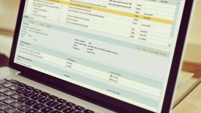 Базовый курс для пользователей системы SAP ERP (ERP10)
