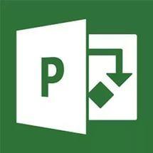 Управление проектами с помощью Microsoft Project 2007 (Продвинутый)