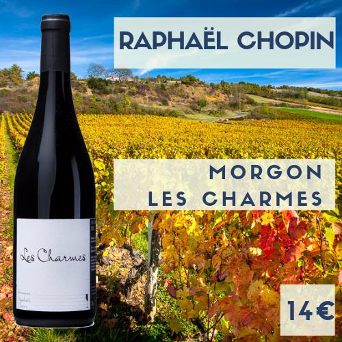 """6 bouteille de beaujolais Morgon """"Les Charmes"""" 2016 domaine Raphaël Chopin (14€)"""