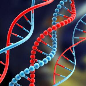 Reprogramming Your DNA; June 4, 2020