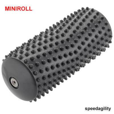 MiniRoll