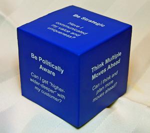 The Coaching Cube