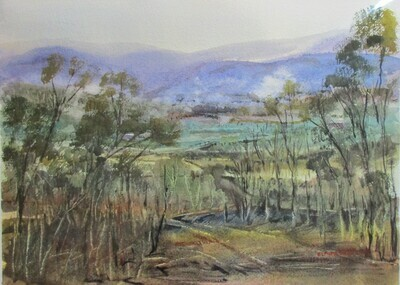 Fire in the Valley  - Art4Bushfire Appeal