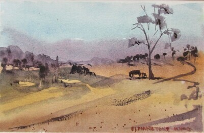 Country  - Art4Bushfire Appeal