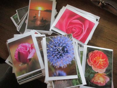 Pack of 5 Assorted Prints