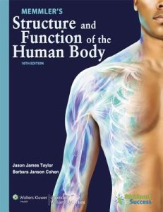 Structure and Function of the Human Body