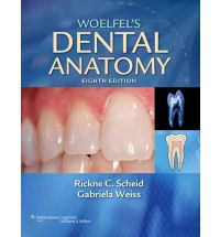 Woelfel's Dental Anatomy Eighth Edition