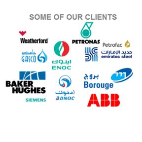 Access Petrotech LLC - Web Store